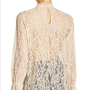 Pleione Stretch Lace Long Sleeve